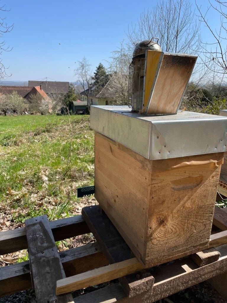 OGPV - Parrainage ruche - Printemps 2021 - 01