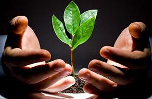 Pentru dezinfectarea semințelor de culturi vegetale, este, de asemenea, posibilă utilizarea unor astfel de cârje ca: