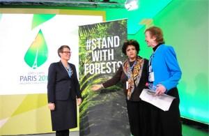 CoP 21 - encontro florestas