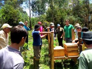 ater santa catarina apicultura