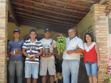 Família produz 300 litros de mel por ano