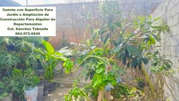 Cuenta con Jardín en la Parte Posterior de la Vivienda, que sirve como invernadero privado.