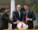 GWB: Pardoning of the National Thanksgiving Turkey. Rose Garden