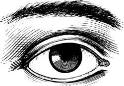 human-eye-1443444367iJZ