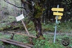 Hier zweigt links der Pionierweg ab