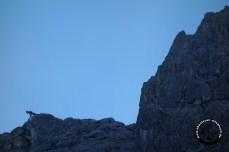bergwerk_wetterstein_gallerie-30