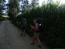 Camino-Portugues-Portugal-2012-070