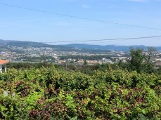 Camino-Portugues-Portugal-2012-091