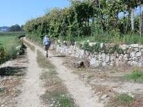 Camino-Portugues-Portugal-2012-117