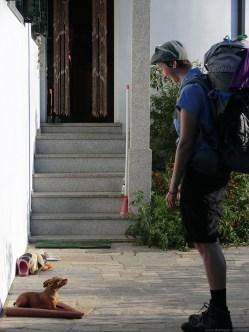 Camino-Portugues-Portugal-2012-134