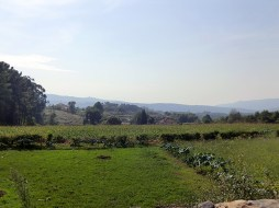 Camino-Portugues-Portugal-2012-208