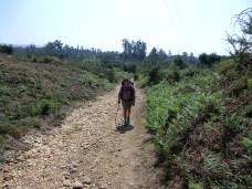 Camino-Portugues-Portugal-2012-218