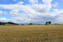 Via-Podiensis-2013_0816