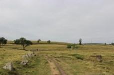 Via-Podiensis-2013_1145