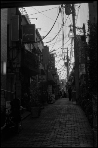 Leica MP  Summarit 5cm f1.5  Fomapan 200