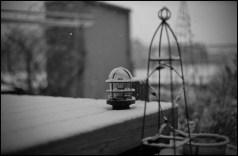 BESSA R2M   NOKTON 50mm f1.1  ILFORD PAN F