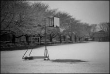 BESSA R2M   NOKTON Classic 35mm f1.4  ILFORD PAN F