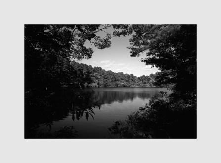 Leica MP ULTRON 21mm f1.8 Aspherical  Rollei Retro80s