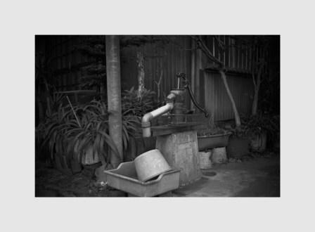 Leica MP  NOKTON Classic 35mm f1.4  Rollei Retro 80s