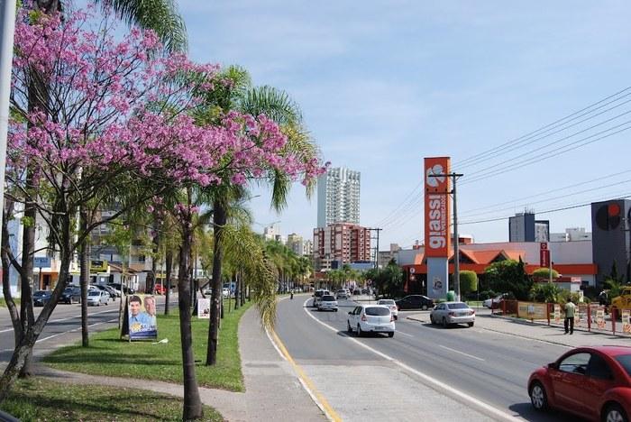 Avenida em Criciúma, representando escritório de contabilidade em Criciúma - Abertura Simples