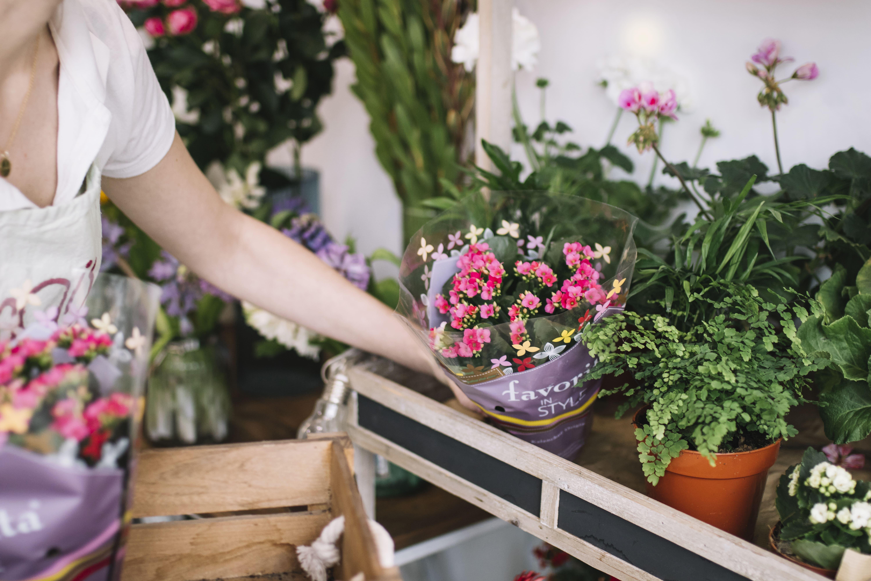 Imagem de uma mulher mexendo em alguns vasos de flores para inspirar quem deseja abrir uma floricultura online