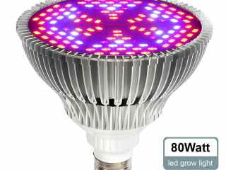 Top 3 Best Plant Growing Lamps 2017 Review