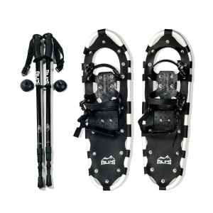 Best Frozen Snowshoes