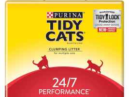 Top 3 Best Litters For Cat 2019 Review