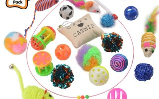 Top 10 Best Cat Toys for Cat in 2018 Review
