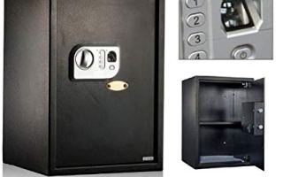 Top 10 Best Finger print lock box Review