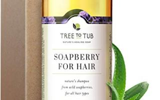 Top 5 Best shampoo for dry hair in 2020 Review