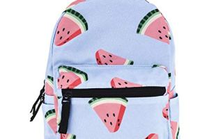 Top 5 best mini backpacks for girls in 2019 review
