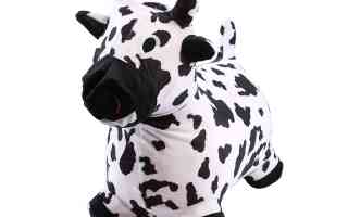 Top 5 best mini cow pet in 2019 review