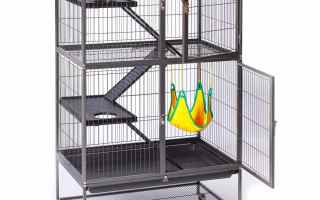 Top 5 Best Prevue Ferret Cages in 2019 reviews