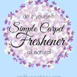 Simple Carpet Freshener