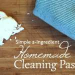 Simple 2-Ingredient Homemade Cleaning Paste