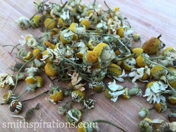 dried chamomile