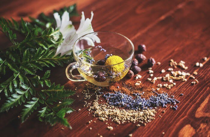 Should Christians use herbs?