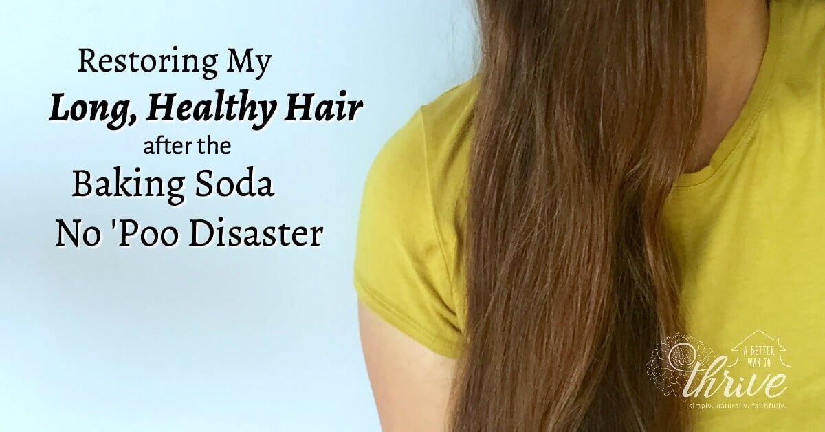 Restoring My Long Healthy Hair after the No \'Poo Disaster
