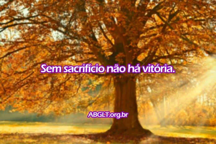 Sem sacrifício não há vitória.