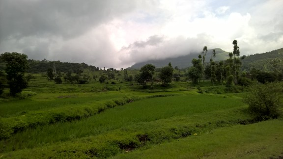 Monsoon makes the India countryside the prettiest in the world!