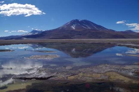 Un petit lac dans le salar, une oasis de vie où quelques oiseaux et plantes survivent courageusement dans ces environnements salés. Vous avez déjà vu des mouettes à 4000m, vous?
