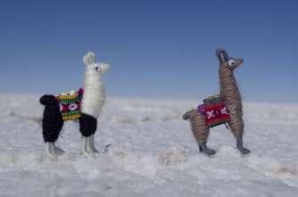 Petits lamas :)