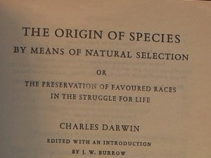 Origin of Species title