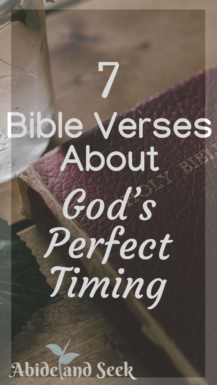 7 Bible Verses About God S Perfect Timing Abide And Seek
