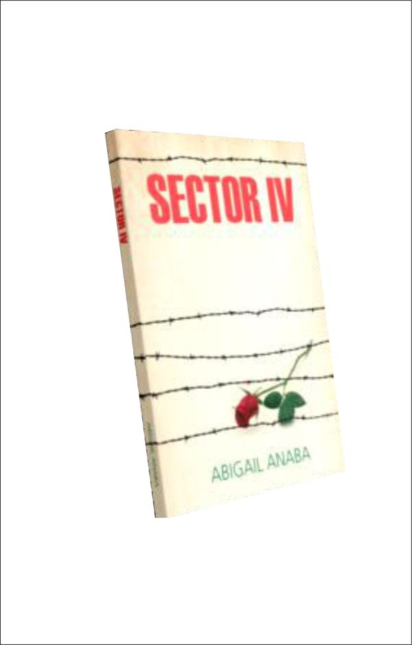 Nigeria Biafra war: sectorIV book 3d
