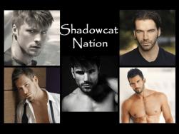 ShadowcatMen-Quiz.fw