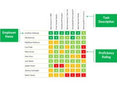 Example of a basic completed skills matrix by ability6®