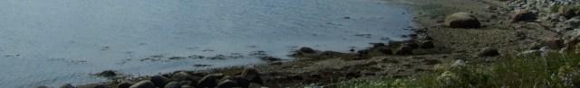 cropped-1b-charlos-cove-a3.jpg
