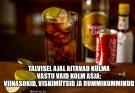 rumm ja koola